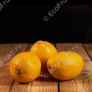 limon-turciya