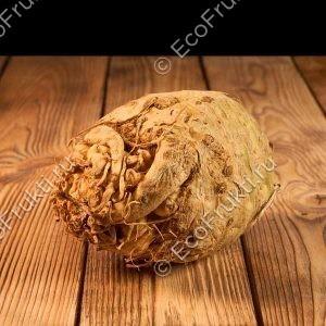 koren-seldereya-1-kg