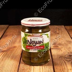 vinograd-listya-noyan